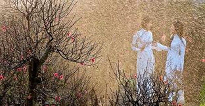 Mưa xuân – Bài thơ viết về mùa xuân và tình yêu hay nhất của Nguyễn Bính